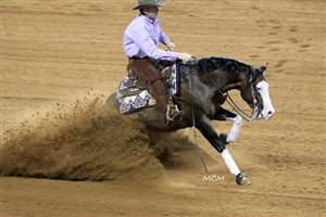 Spooks Gotta Whiz (NRHA FUTURITY CHAMPION)